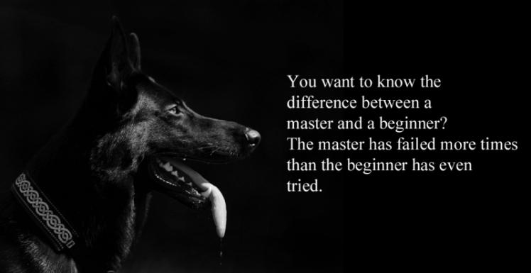 beginnermaster_zpspanlpegb